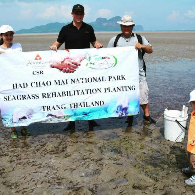 Sea grass planting in Trang to help the dugong withhellip