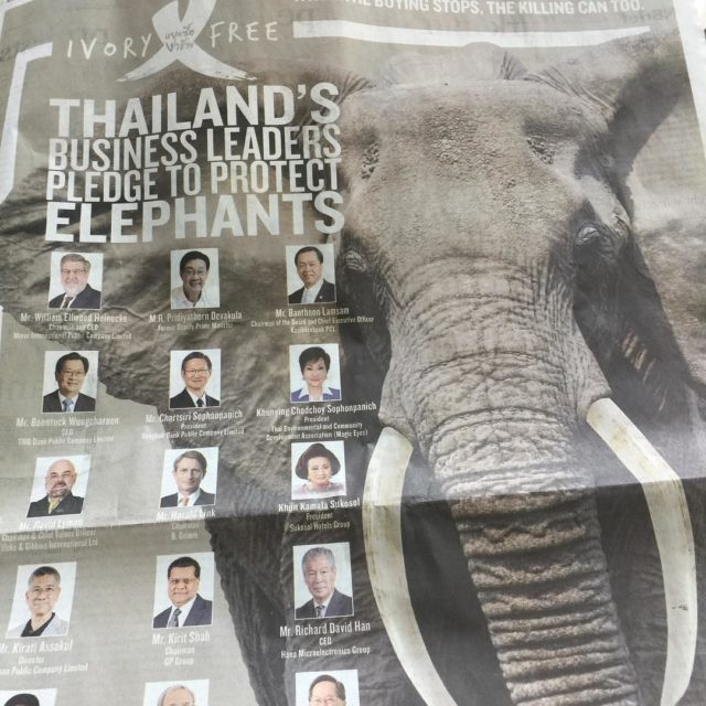 Thailands business leaders working together to protect elephants including anantarahotelshellip